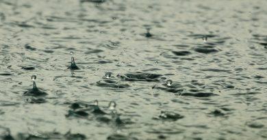 Regen in Sicht?